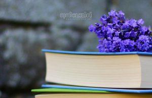ayishathu baeeniyyah-malayalam article